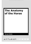 stubbs_anatomy_of_the_horse_cover